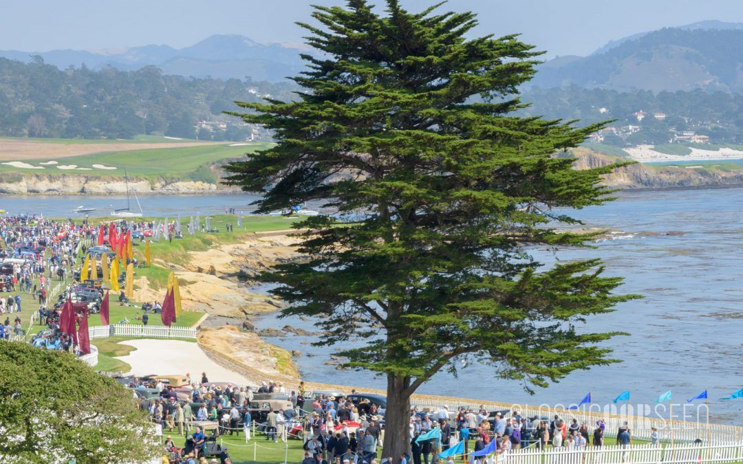 2017 Pebble Beach Concours d'Elegance Award Winners