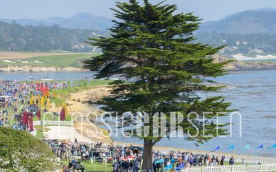 Best of Show Nominees at the 2017 Pebble Beach Concours